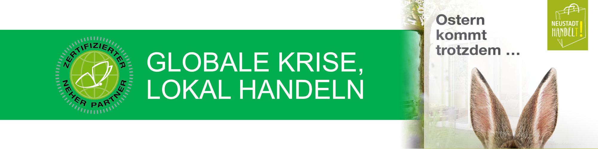 Sonflie-03-Fliegengitter07-Neustadt-handelt